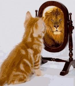Pisica cinstită sau leu mincinos?
