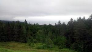 Poză din Fundy National Park, înaintea drumului stricat.